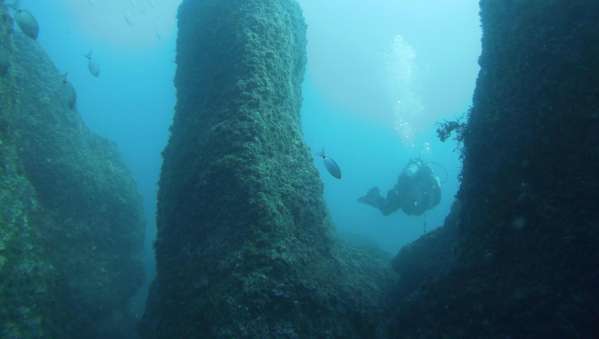 Scuba Diving - Guided Excursion near Lagos & Sagres