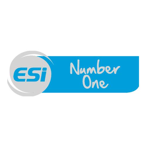 Logo ESI Number One Ovronnaz