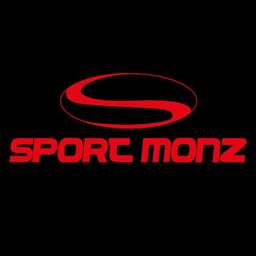 Logo Skischule Pfunds