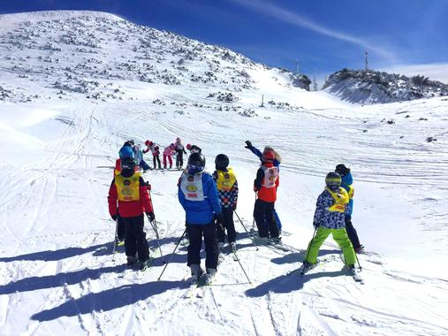 Kids Ski Lessons (5-14 y.) - Carnival - Beginner