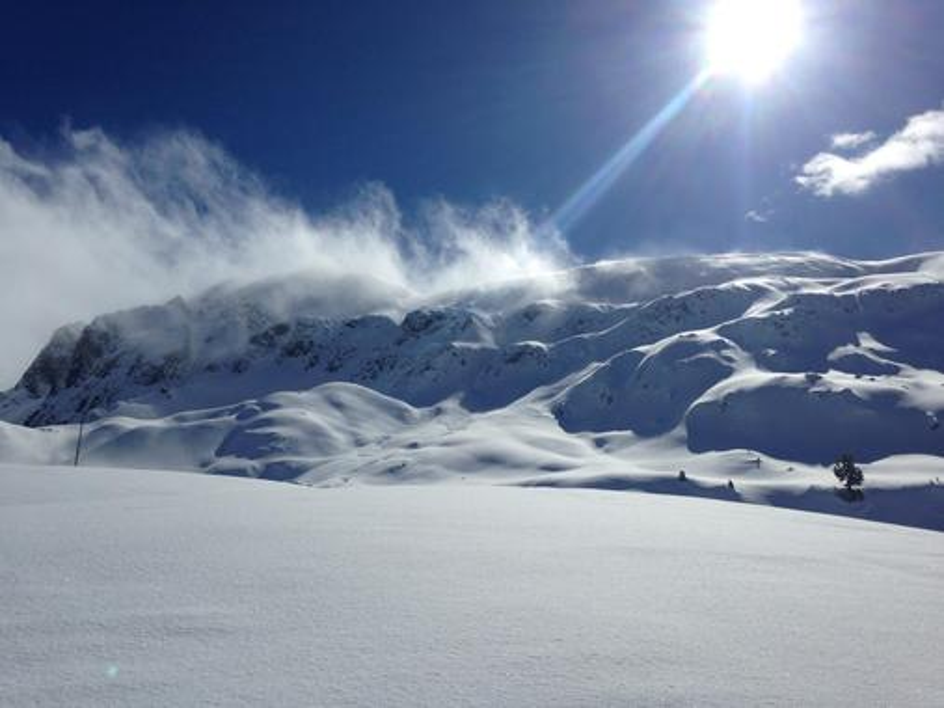 Davos/Klosters Mountain Safari