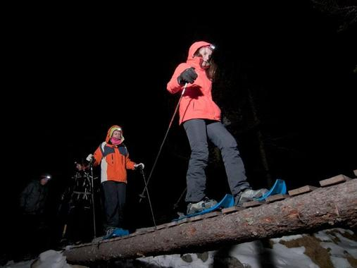 Private Snowshoeing Tour - Nocturnal