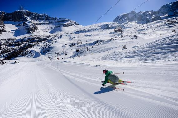 Skiing lessons incl. video analysis (adults)
