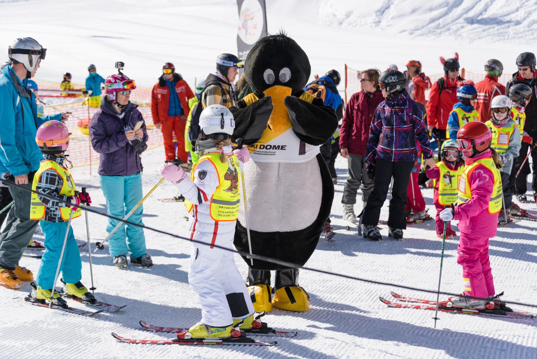 Ski Lessons