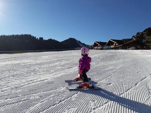Ski Instructor Private for Kids (2-3 years)