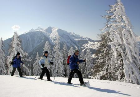 Privat lesson Snow Shoeing