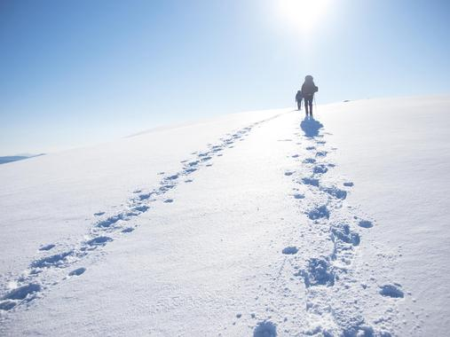 Snowshoe-hiking private tours