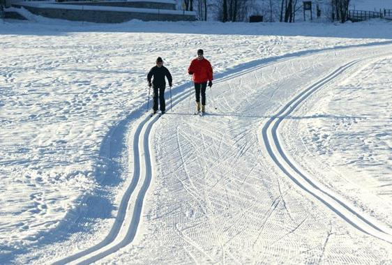 Cross-country skiing from beginners to pros